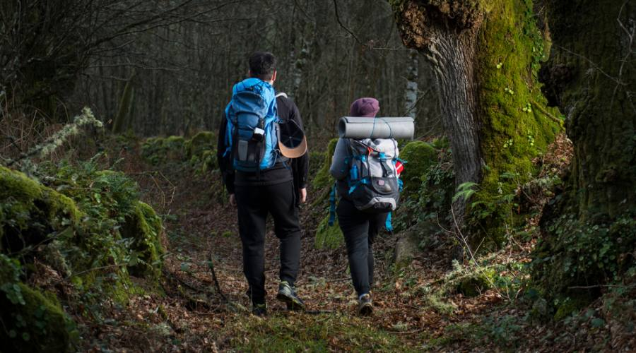 camminando nella natura