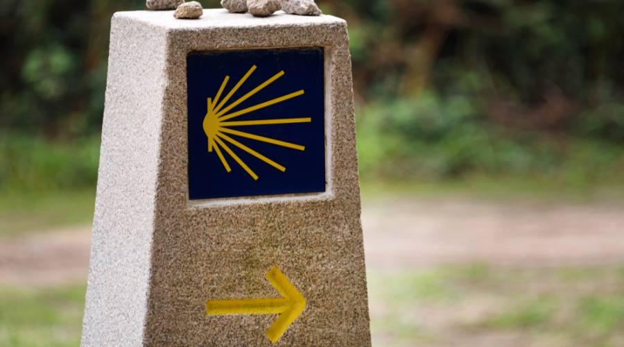 Segui la freccia gialla...
