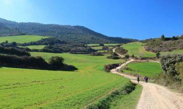 Il Cammino Itinerario del Nord da Vilalba a Santiago a piedi in 7 giorni - 119 km - Tour Individuale