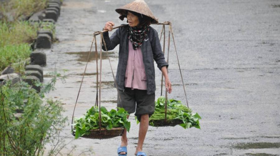 - la vita contadina
