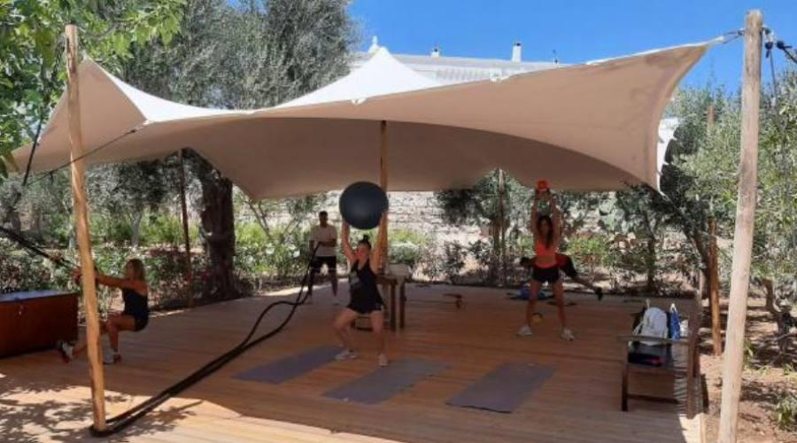 Yoga tra gli Ulivi