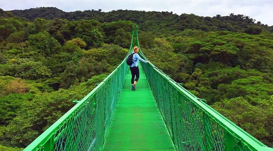 Ponti sospesi a Monteverde