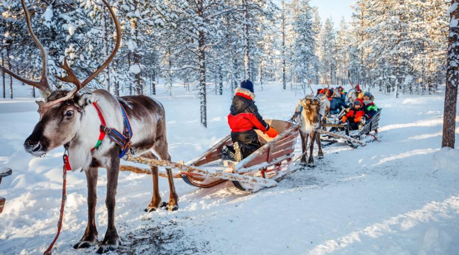 In slitta con le renne, come Babbo Natale