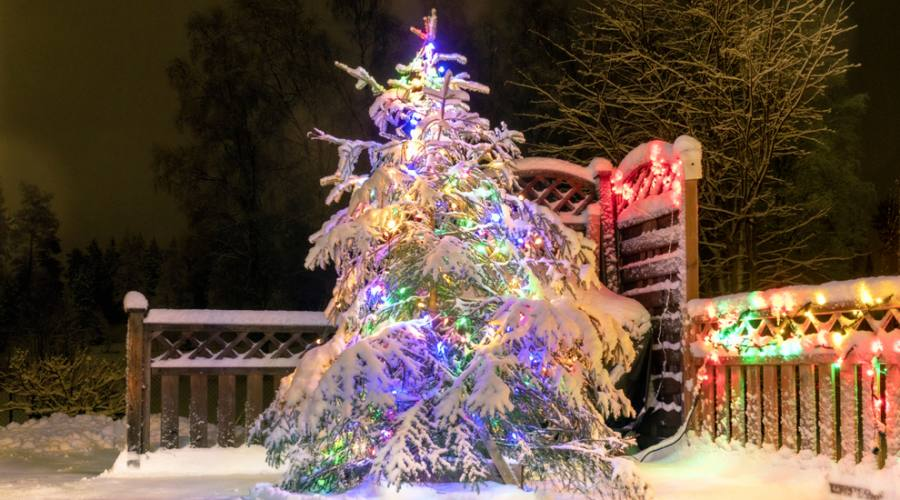 Albero di Natale in Svezia