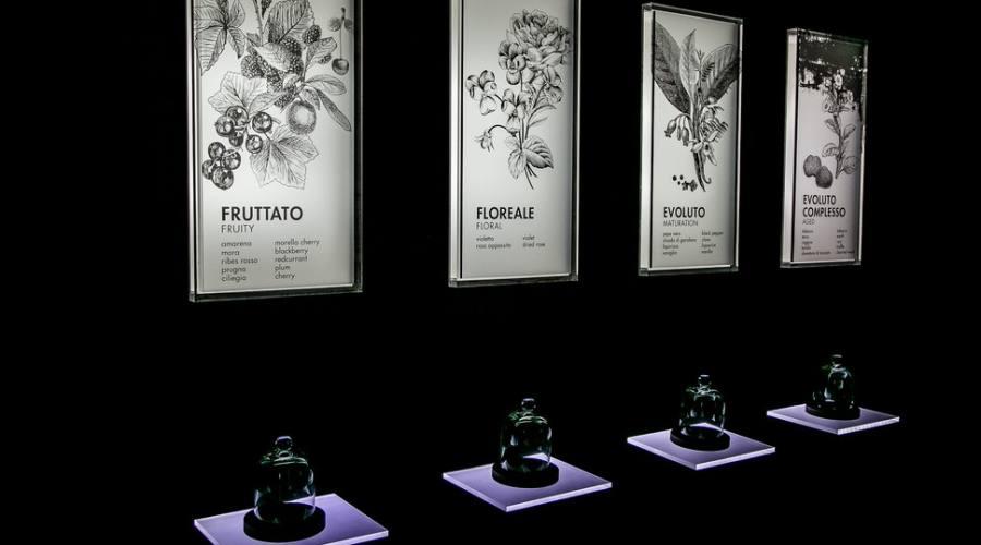 museo del Chianti percorso sensoriale