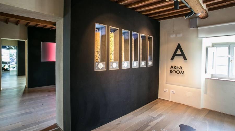 museo del vino percorso sensoriale