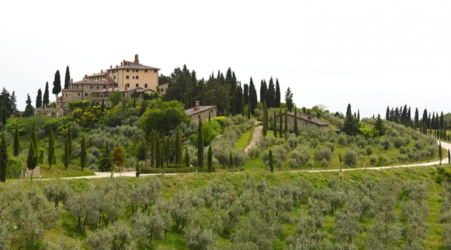 San Polo in Chianti