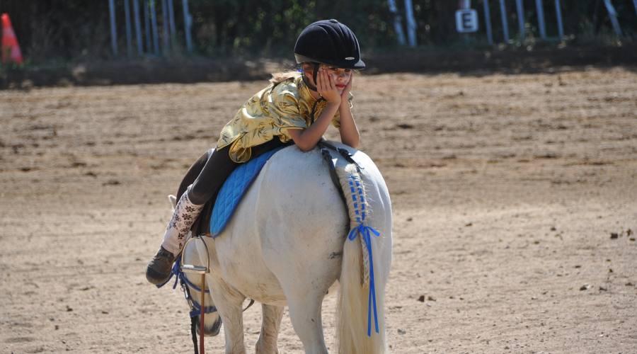 Servizio fotografico a cavallo