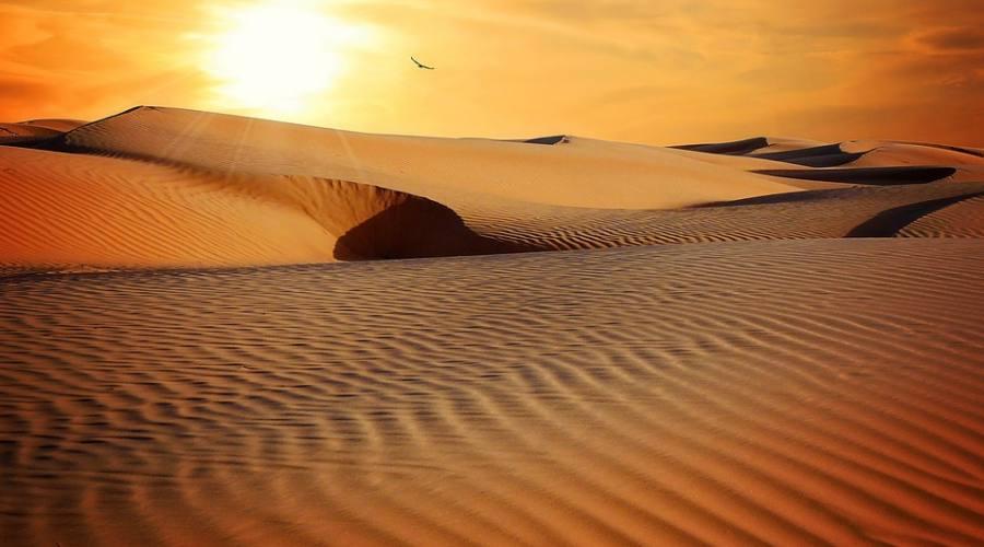 Arabic Desert