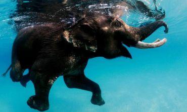 La Magia delle Isole Andamane