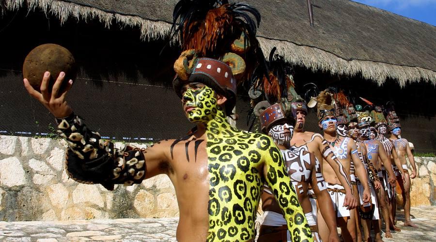 Indigeni