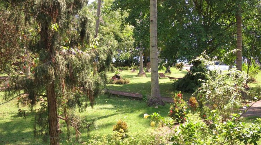 il giardino tropicale