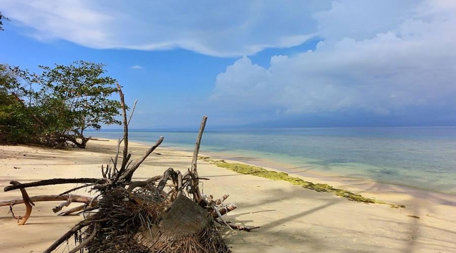 ambiente della spiaggia