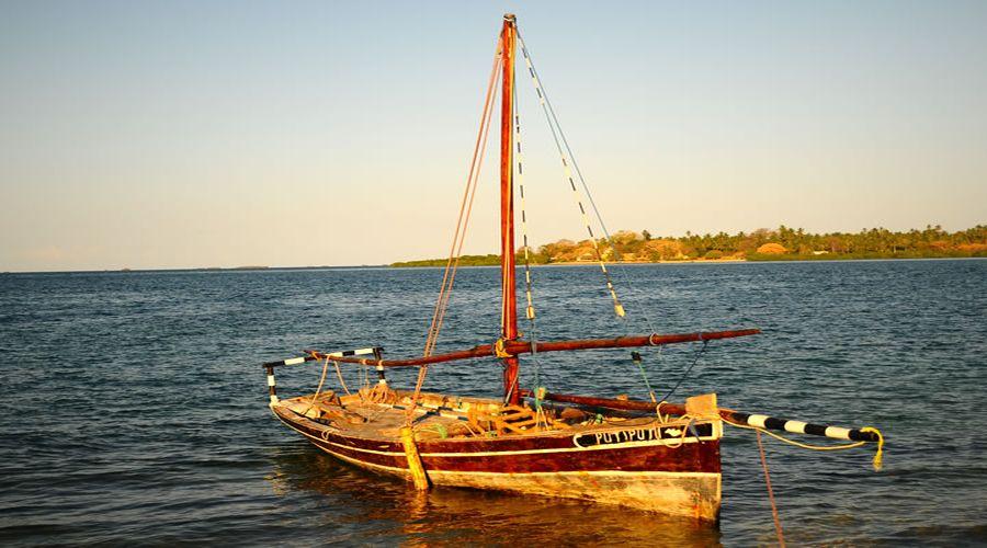 sailong