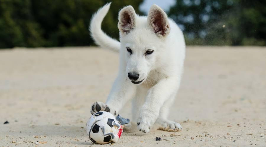 Giocando in spiaggia...