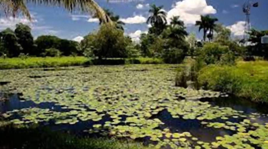 Zapata, Cuba