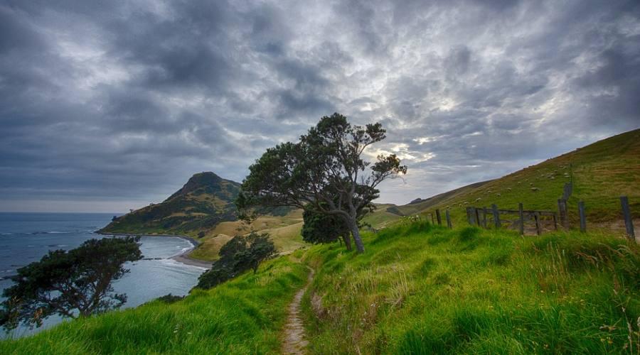 Sentiero Nuova Zelanda