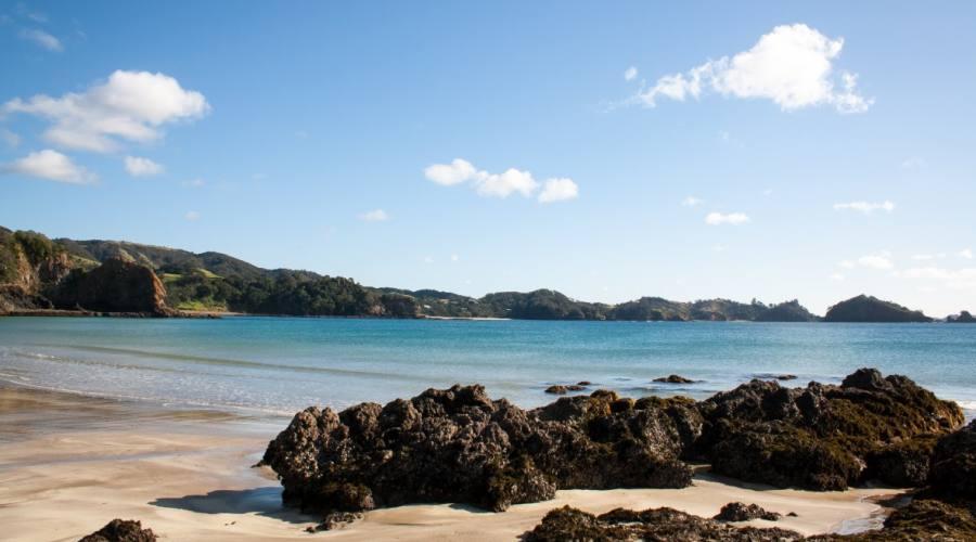 spiaggia oceano