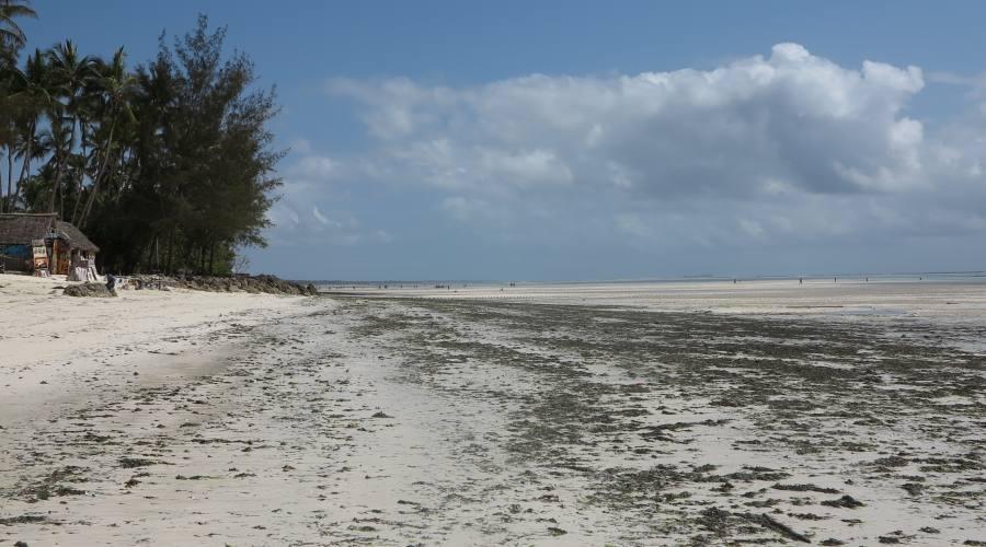 La spiaggia Pwani Mchangani