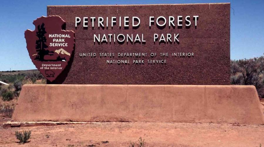Foresta Pietrificata