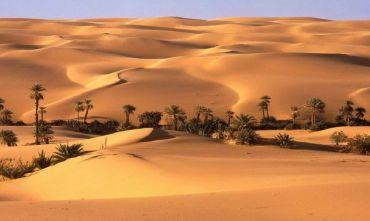 Speciale ed Esclusivo Evolution Travel: I Mercatini Di Natale con Le Mille Kasbah e Deserto