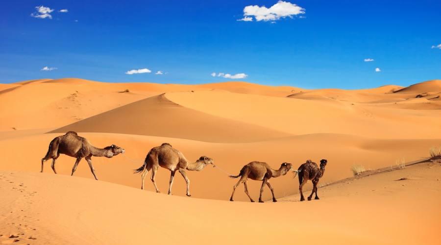 Le Dune di Merzouga Sahara