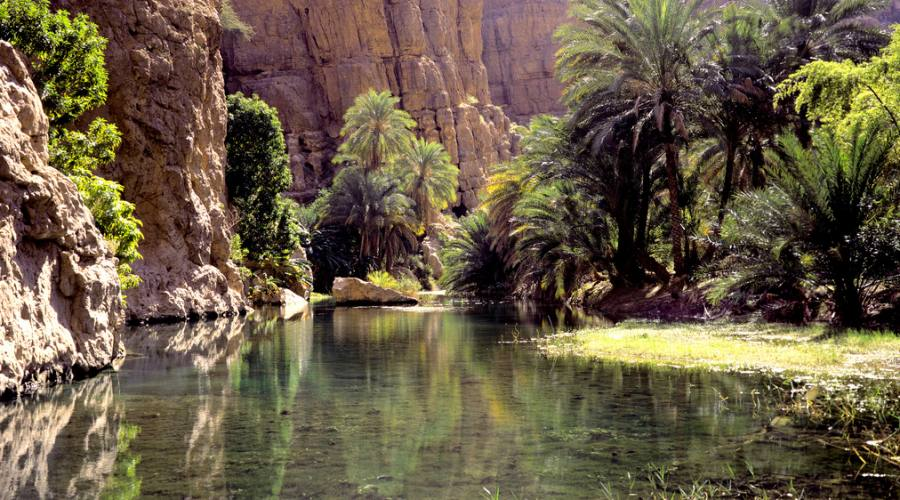 Wadi Shah, un'oasi in un canyon