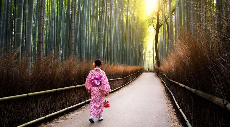 Kyoto Arashiyama Foresta Bambù