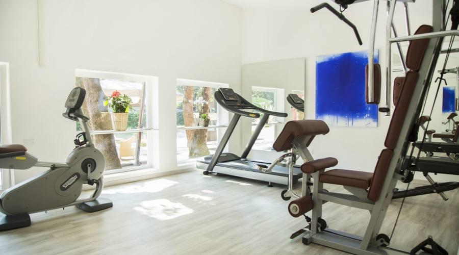Palestra e Fitness