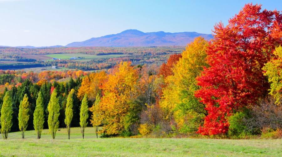 Foliage Quebec