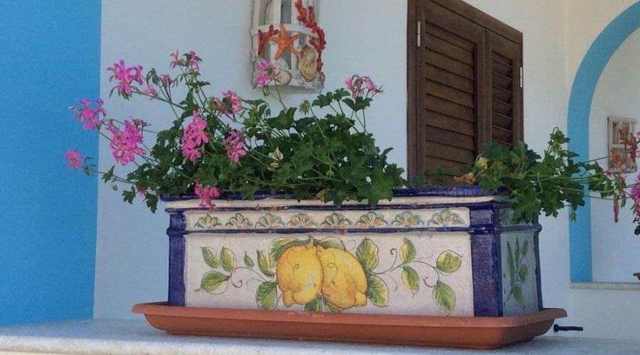 Tradizione ad Ischia
