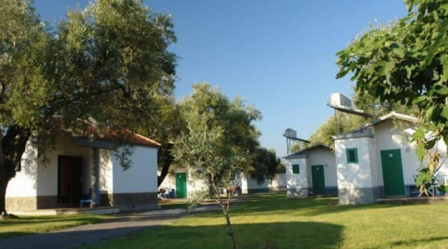 Villaggio economico 3 stelle sul mare Ascea Marina: bungalow