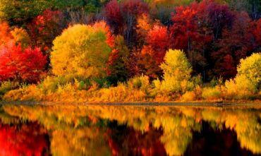 I Mille Colori del New England - Tour di Gruppo Privato